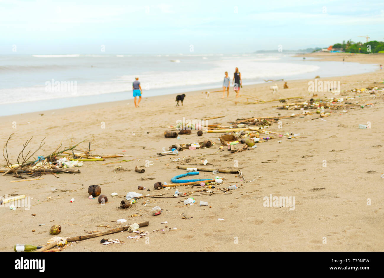 People walking with the dogs by polluted with plastic and waste beach. Bali island, Indonesia - Stock Image