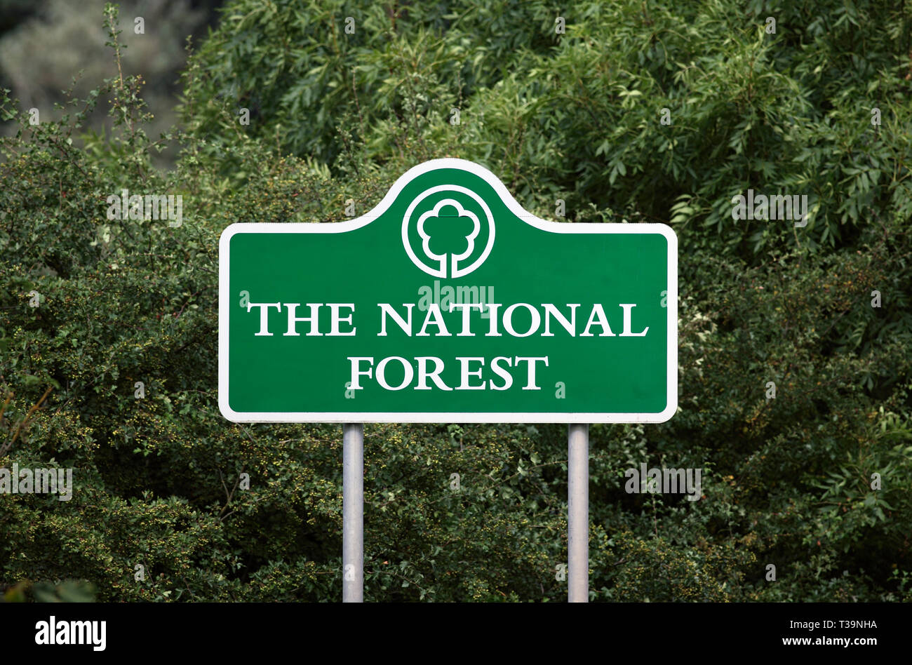 Sign by a road denoting the boundary of the National Forest, near Ibstock, Leicestershire. - Stock Image