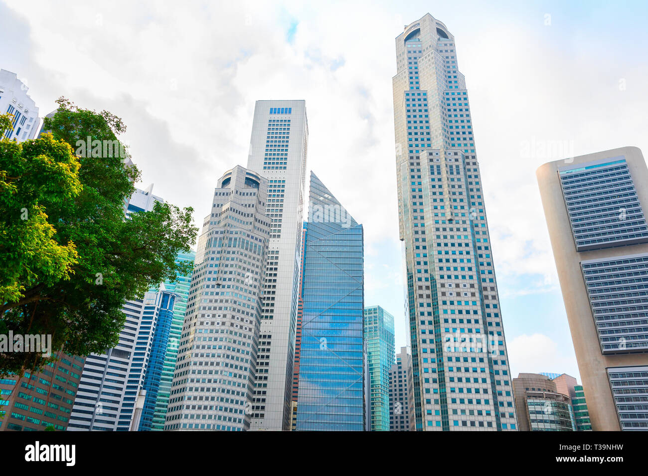 Modern skyscrapers of Singapore Downtown Core, bottom view - Stock Image