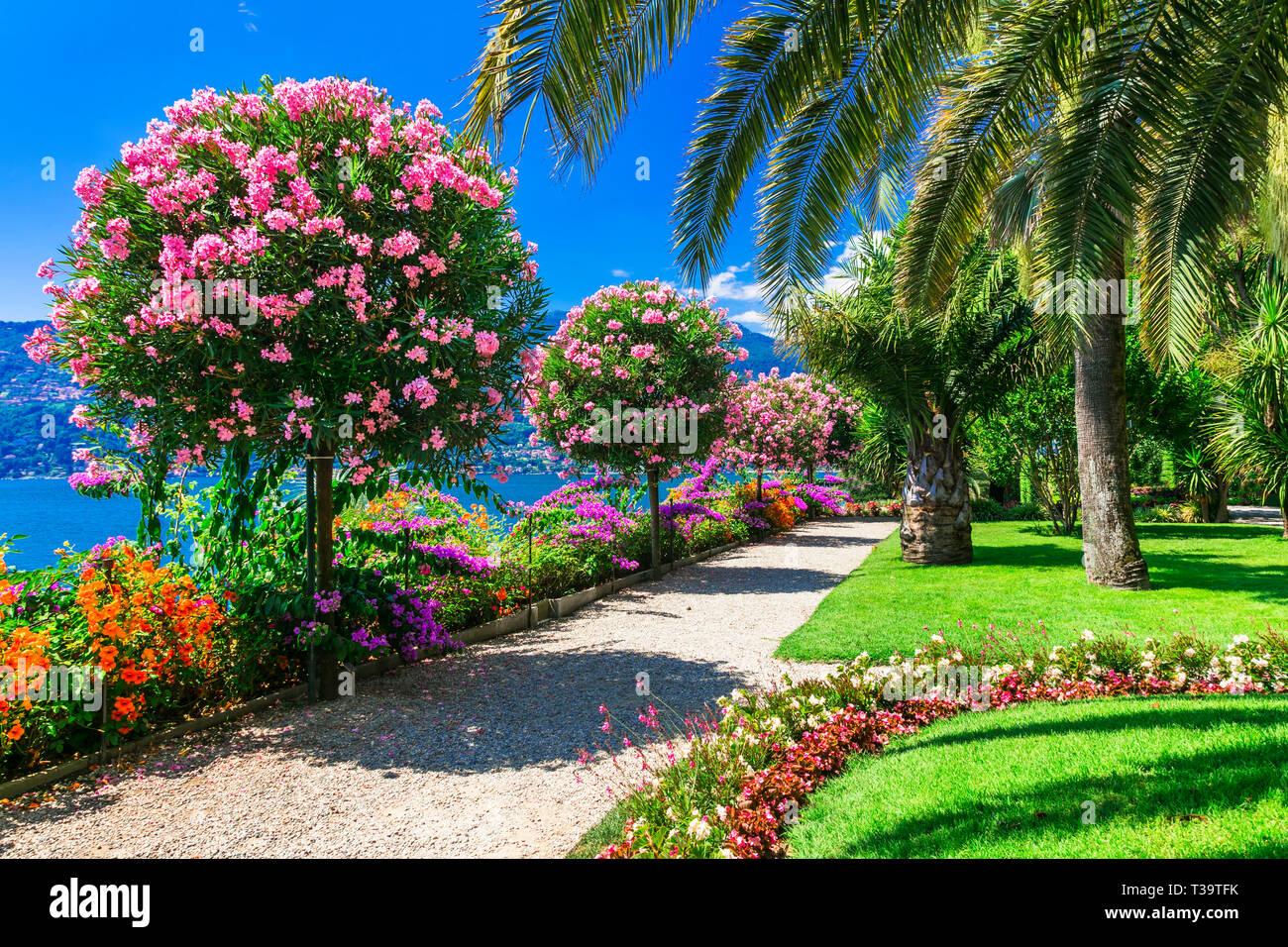 Beautiful gardens in Lake Maggiore,Italy Stock Photo ...