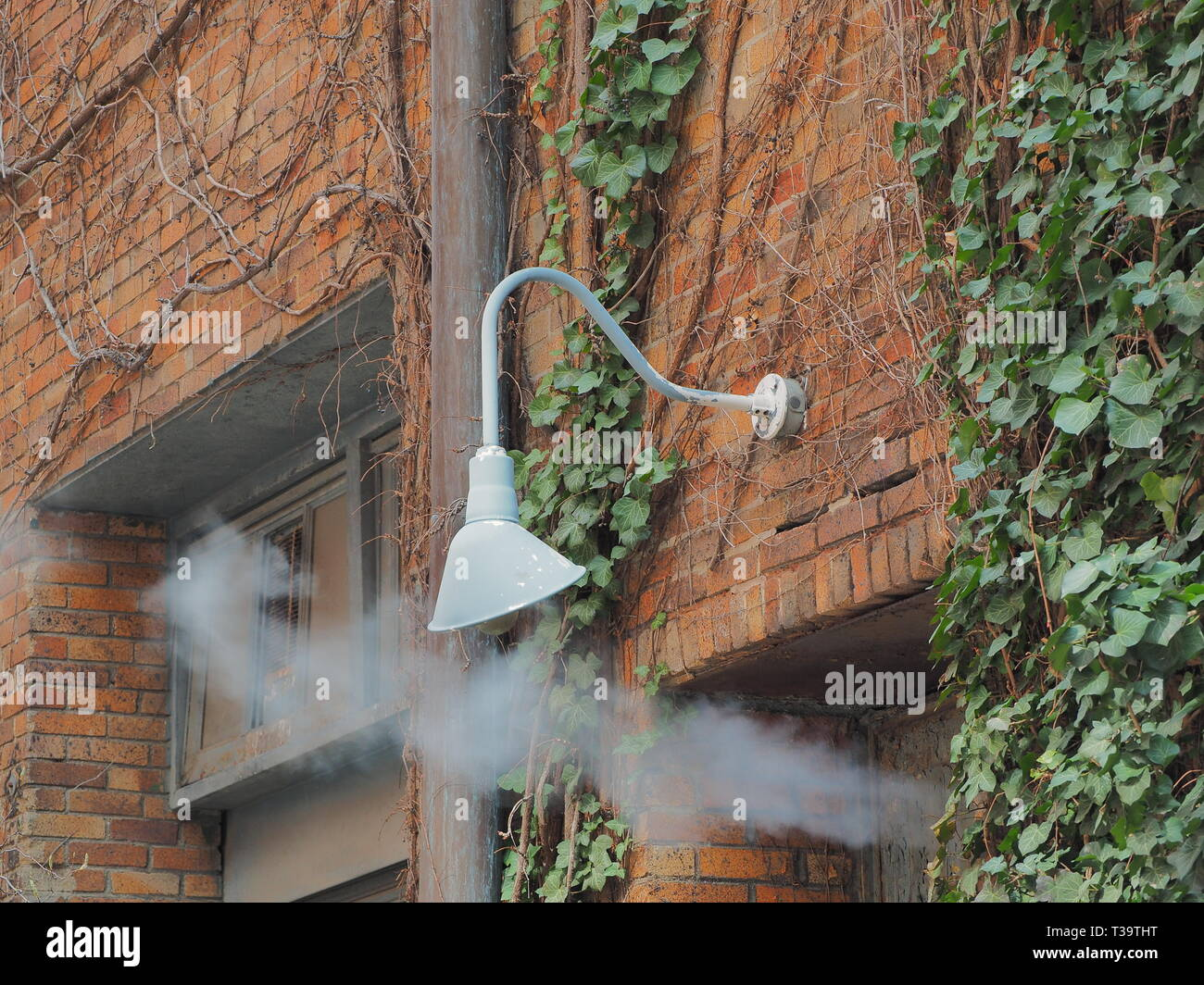 Brick wall with ivy, light and steam vent Stock Photo