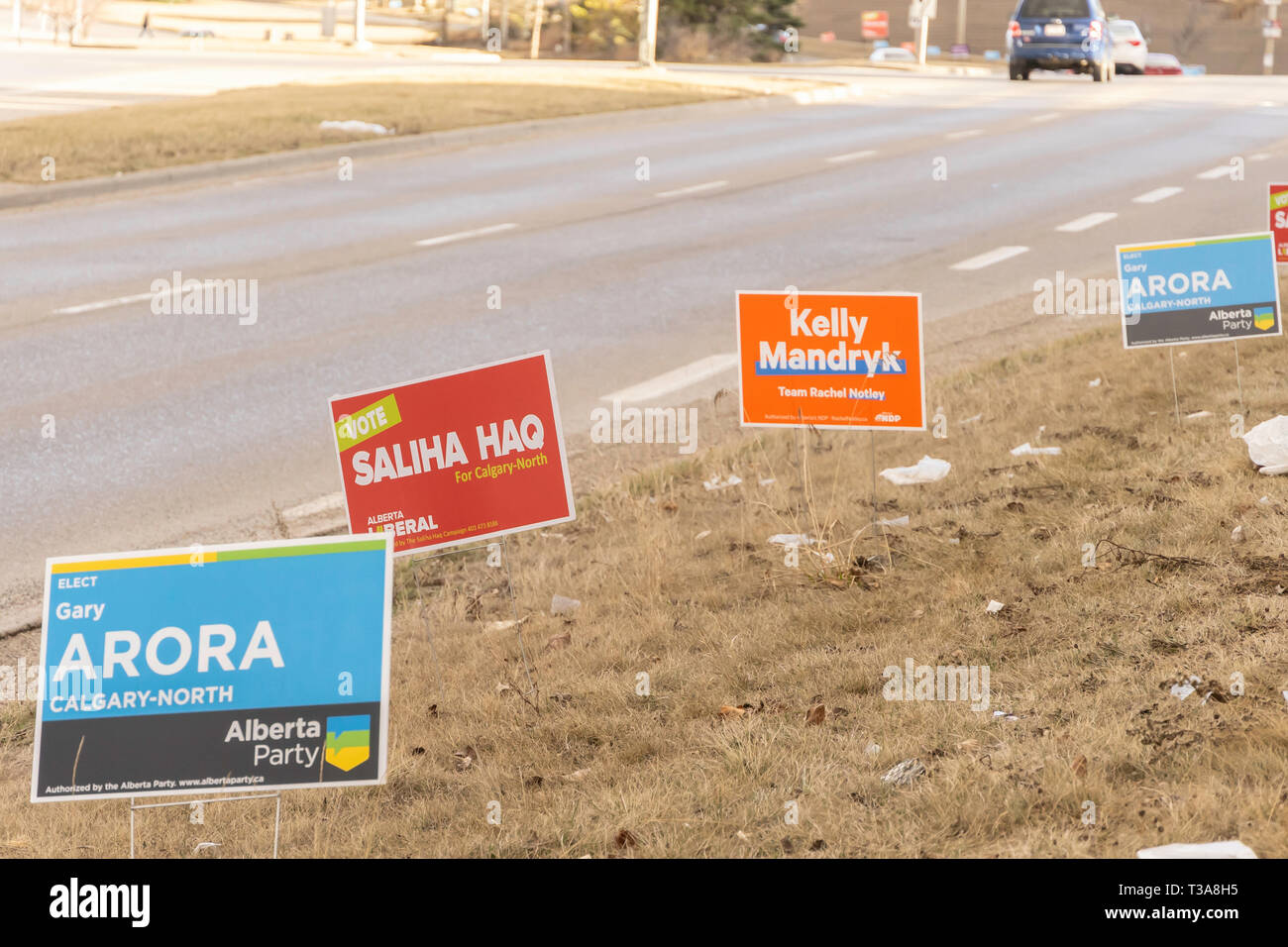 April 7 2019 - Calgary., Alberta , Canada - Candidate campaign signs on road for provincial elections - Stock Image