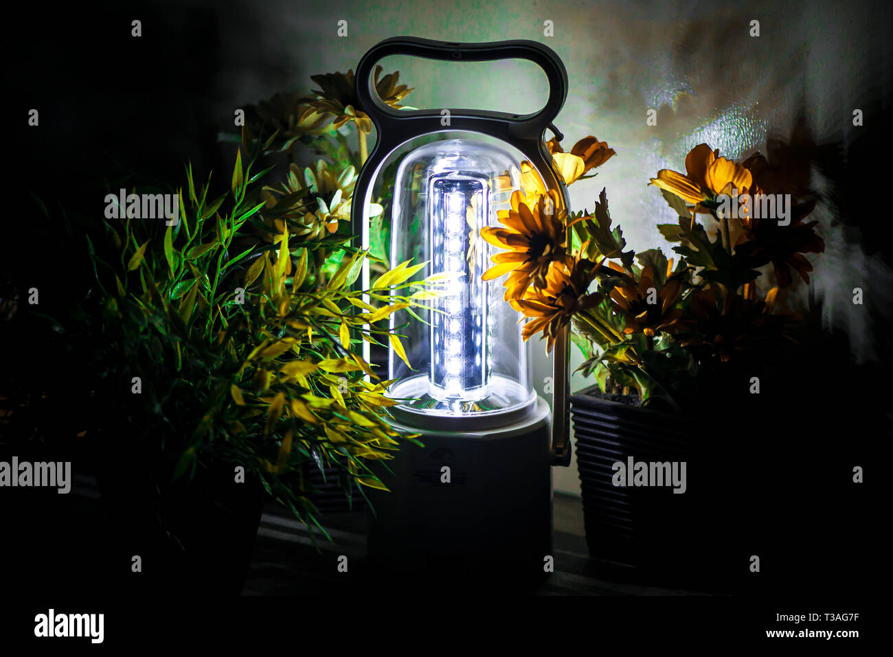 Glowing LED lantern illuminating on a desk with some green and yellow flowers Stock Photo