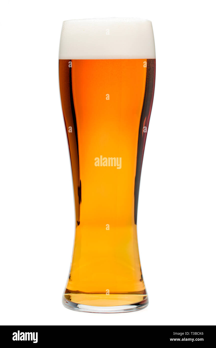 Full pilsner glass of bubbling amber beer or ale with tall head of foam isolated on white background - Stock Image