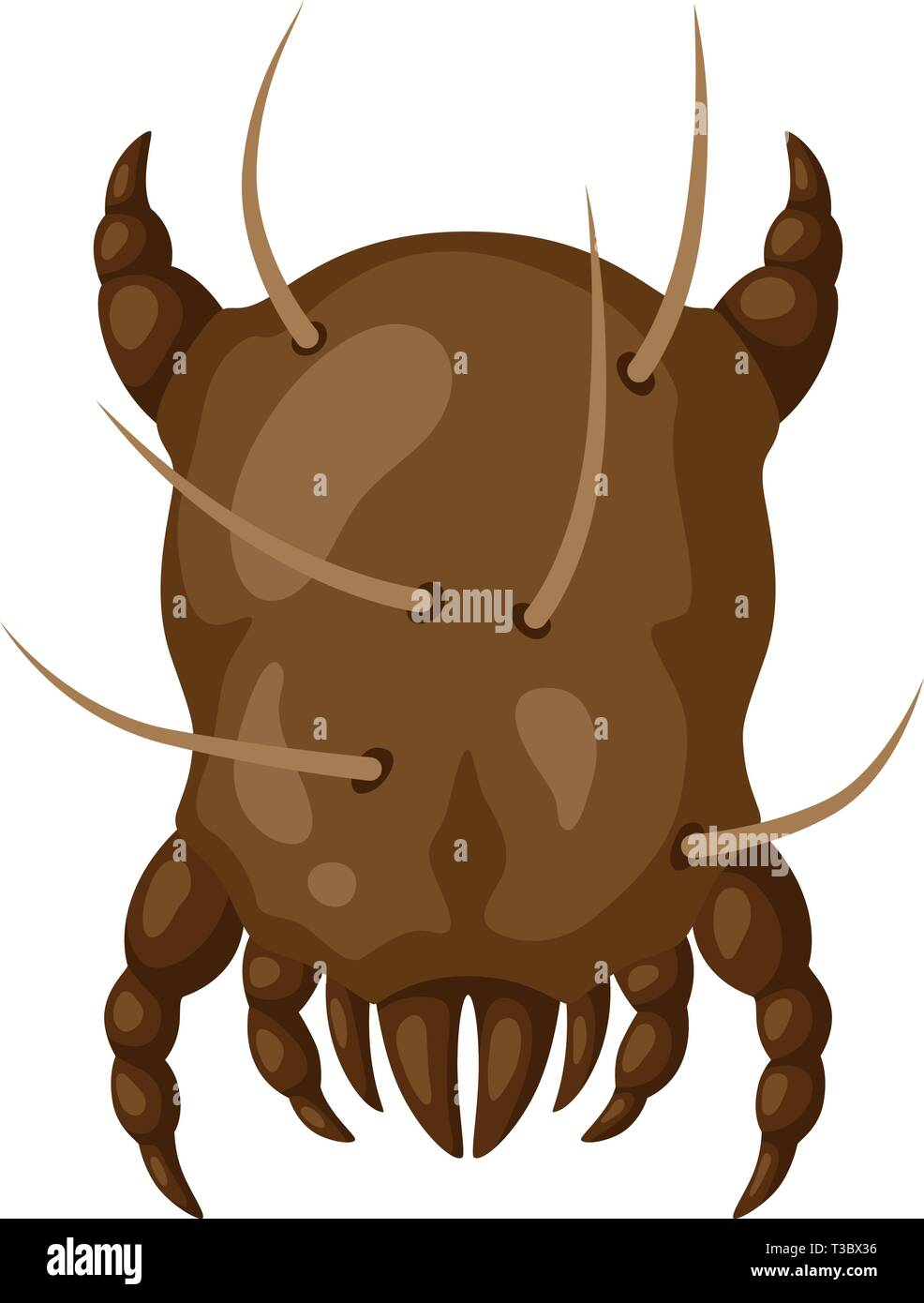 Icon dust mite insect. Illustration solated on white background. - Stock Image