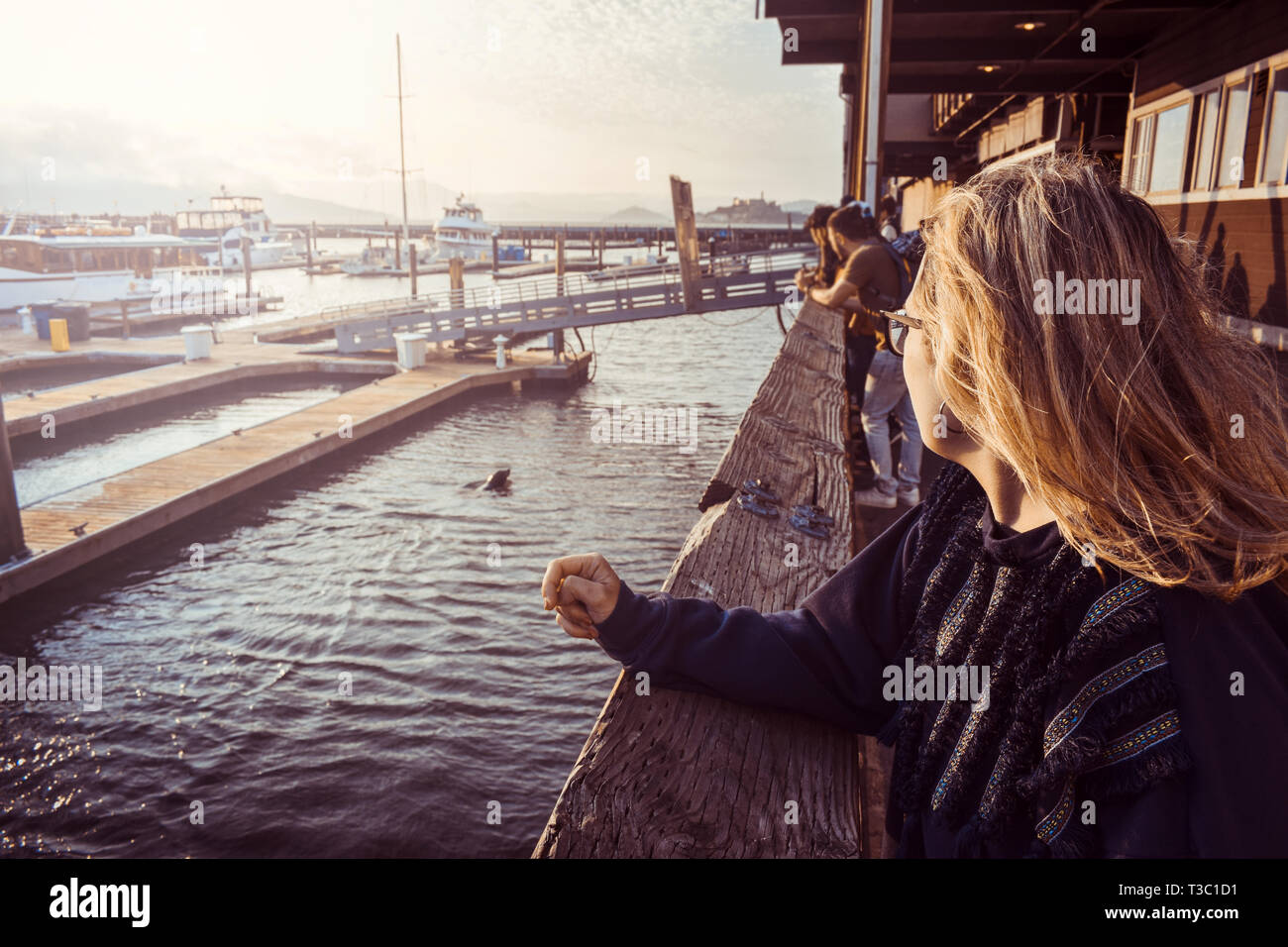 Tourist woman at Pier 39, San Francisco, California, looking at sea lions. Sunset view. - Stock Image