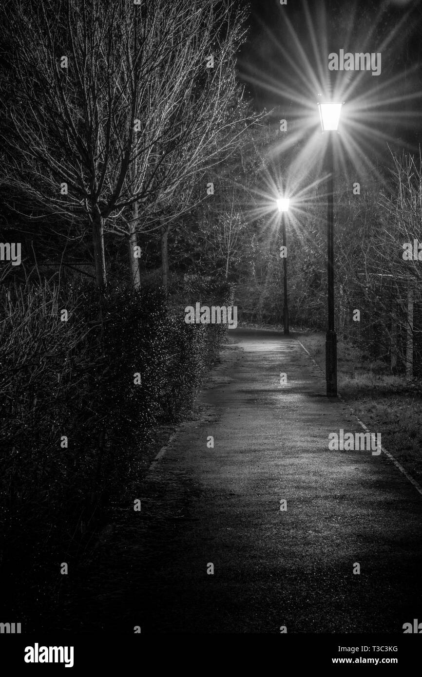 A monochrome view of a deserted path light by two streetlights at night - Stock Image