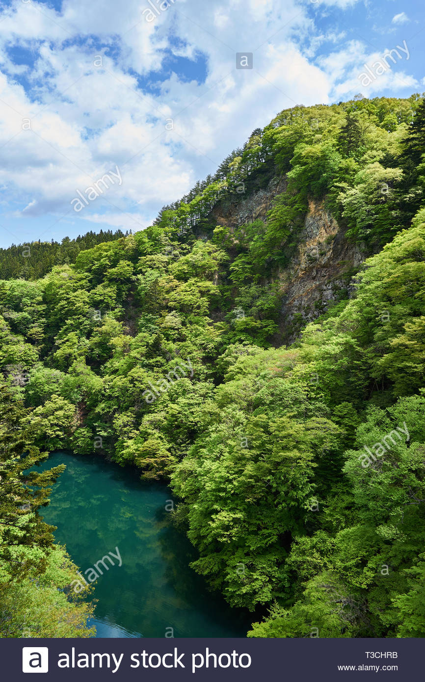 Deciduous trees growing on rocky mountainsides reflect in blue green water of a river in Minakami, Gunma, Japan, on a sunny day in late spring. - Stock Image