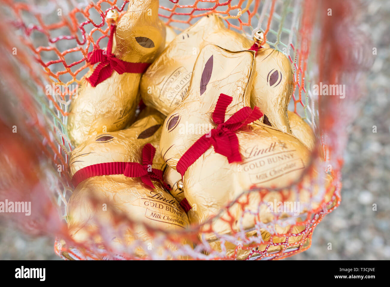Lindt gold bunnies in shopping bag Stock Photo