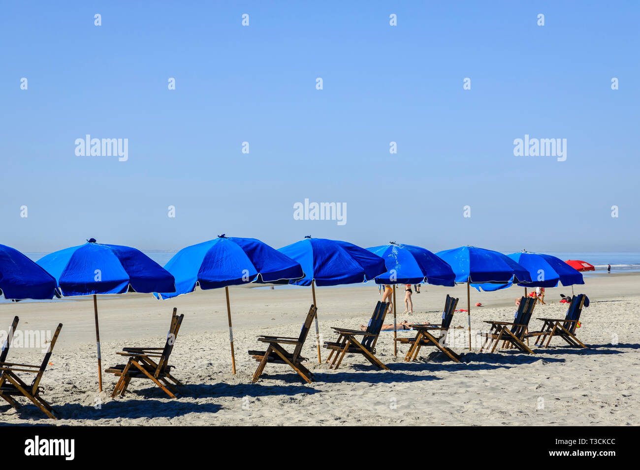 A group of blue umbrellas and beach chairs on an ocean beach. - Stock Image