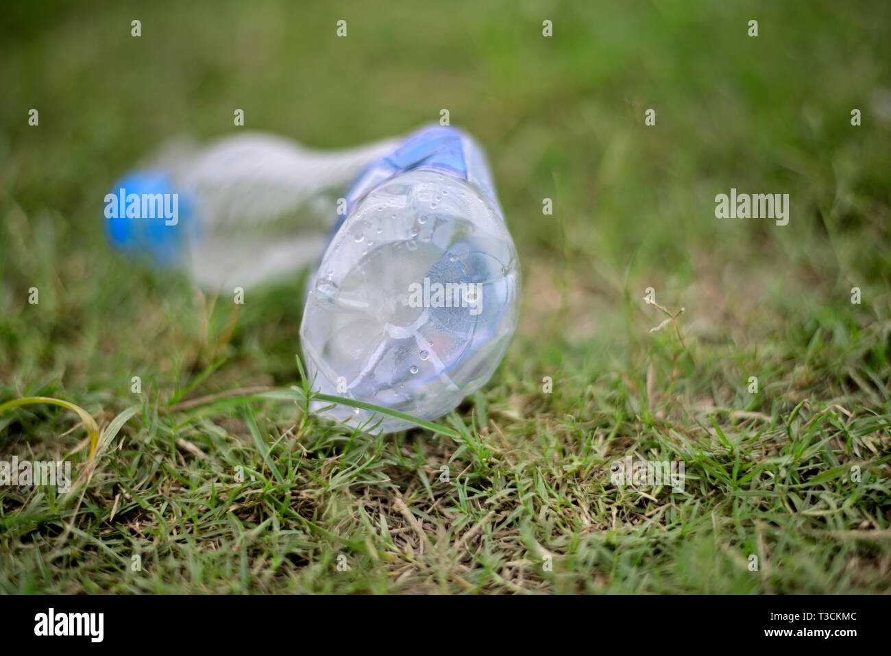 Discarded plastic water bottle on green grass field. - Stock Image