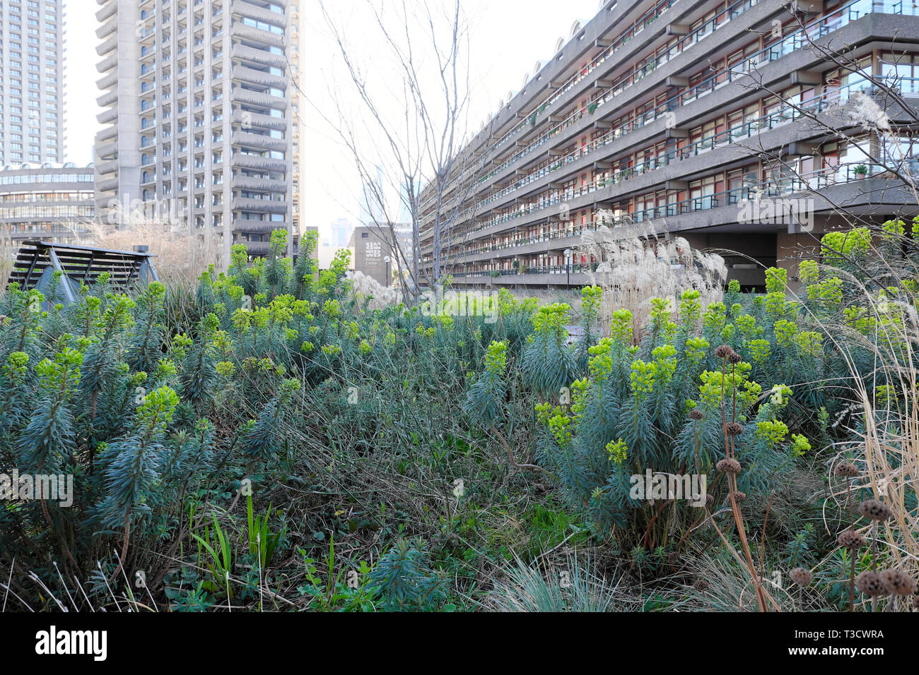 Barbican Garden Stock Photos Barbican Garden Stock Images Alamy