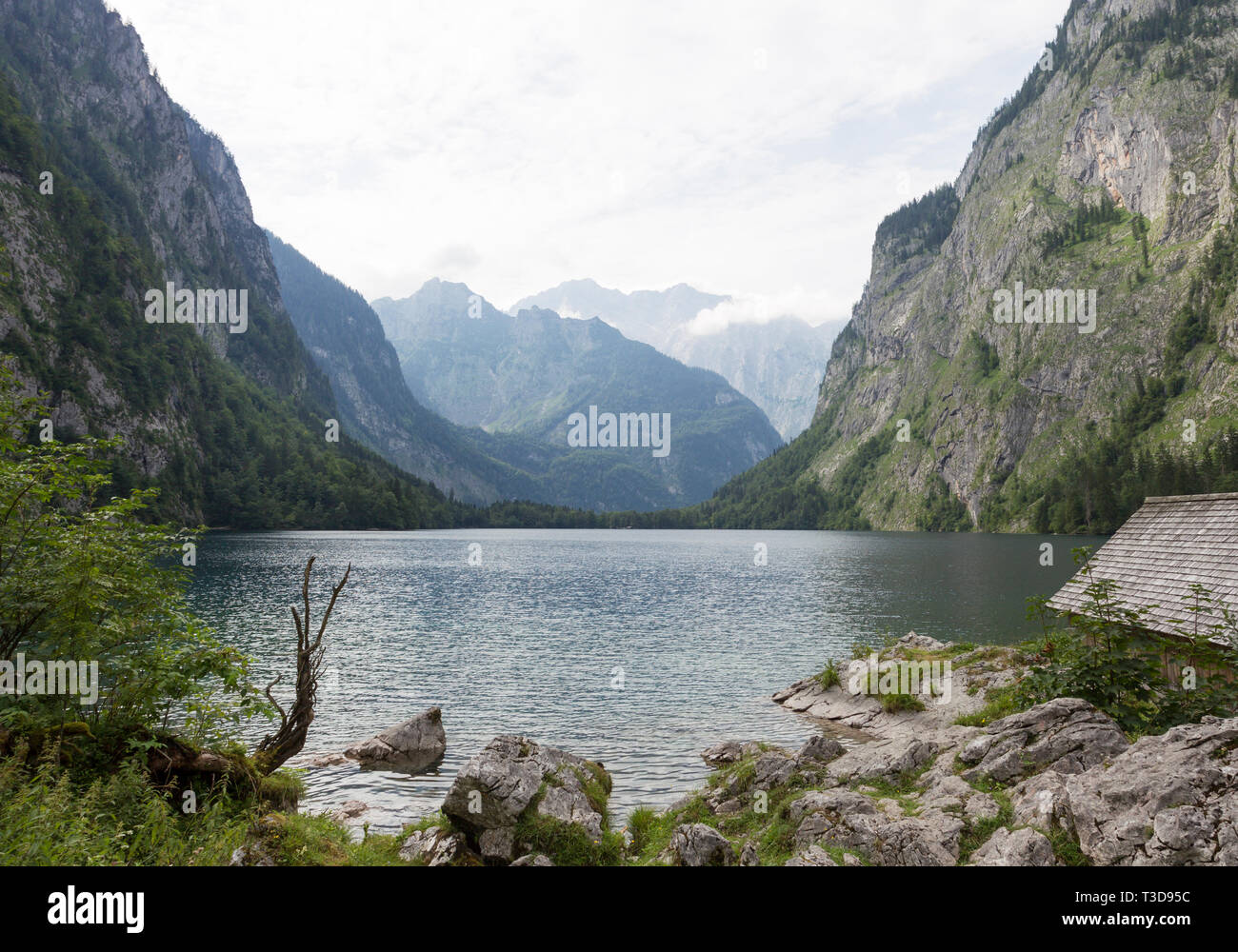 Obersee - Stock Image
