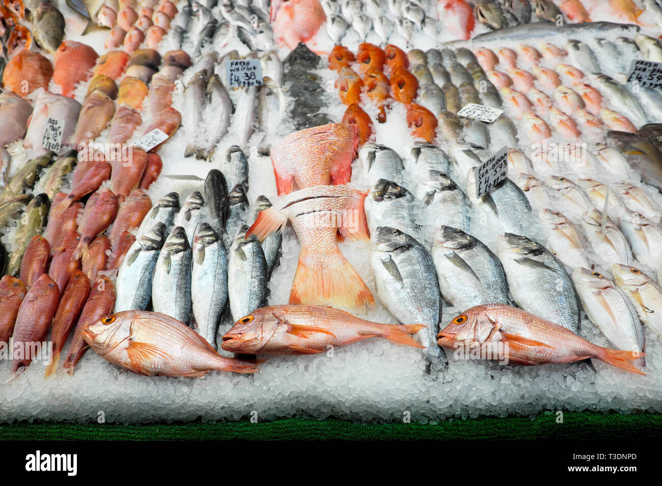Fish display at fish sellers shop in Brixton Market, South London England UK  KATHY DEWITT Stock Photo
