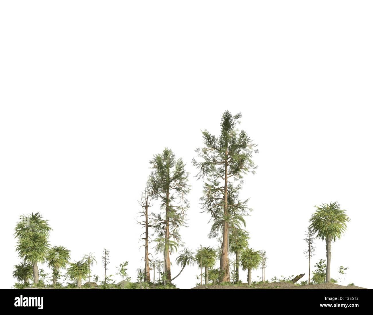 Forest of the mesozoic era isolated on white background 3D illustration - Stock Image