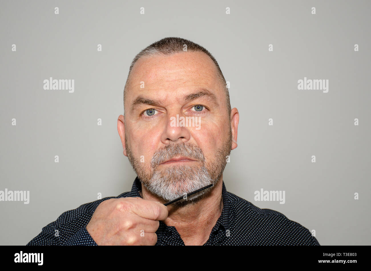 Bearded middle-aged man combing his greying goatee beard while looking at the camera in a concept of personal grooming and hygiene - Stock Image
