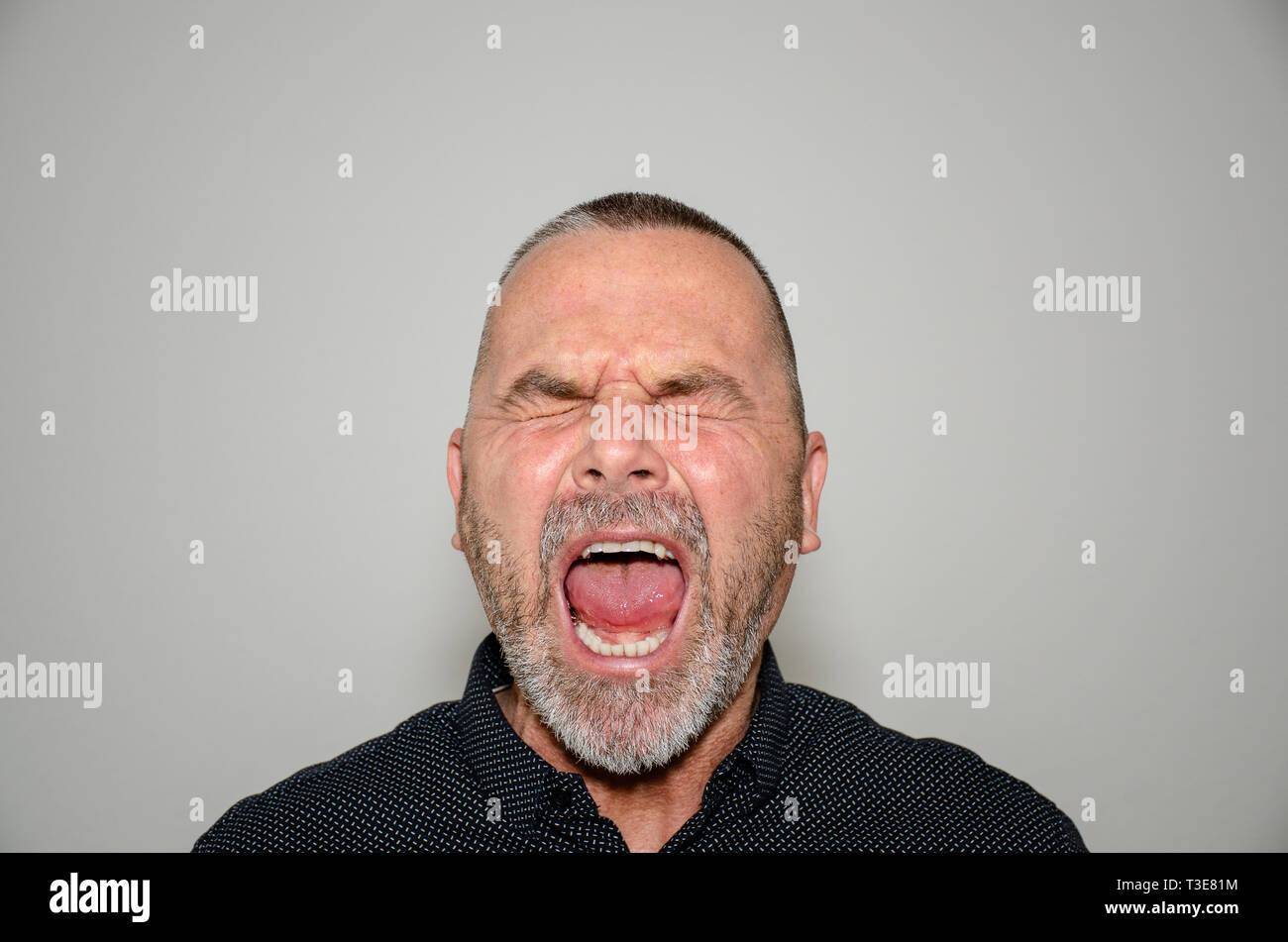Frustrated angry middle-aged man yelling out loud to voice his annoyance with closed eyes and wide open mouth over a grey studio background - Stock Image