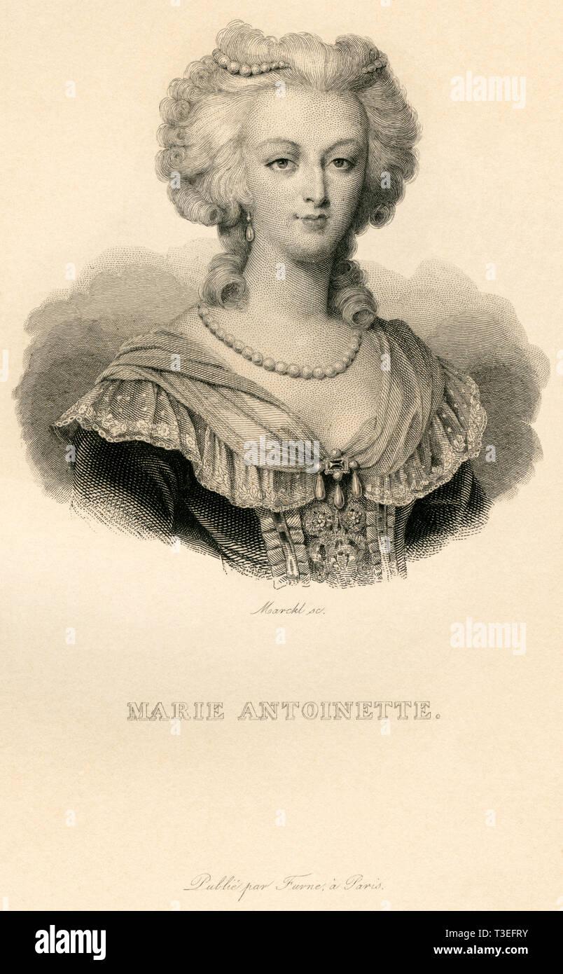 Europa, Frankreich, Marie Antoinette, Königin von Frankreich, Kupferstich von Marckl ( geb. 1807 in Paris ) , wahrscheinlich 1830er - 1840er Jahre ? , Stock Photo