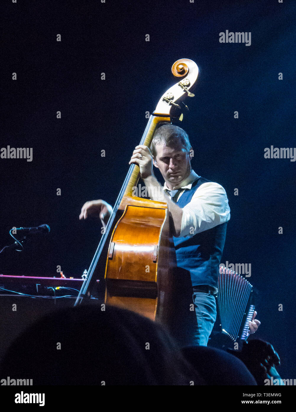 Nate Query, bassist of The Decemberists band perfoming playing music upright bass in concert Stock Photo
