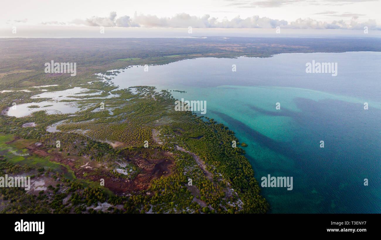 swamp, mafia island - Stock Image