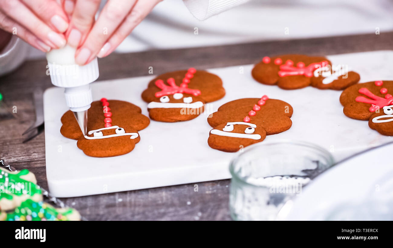 Step By Step Decorating Gingerbread And Sugar Cookies With Royal