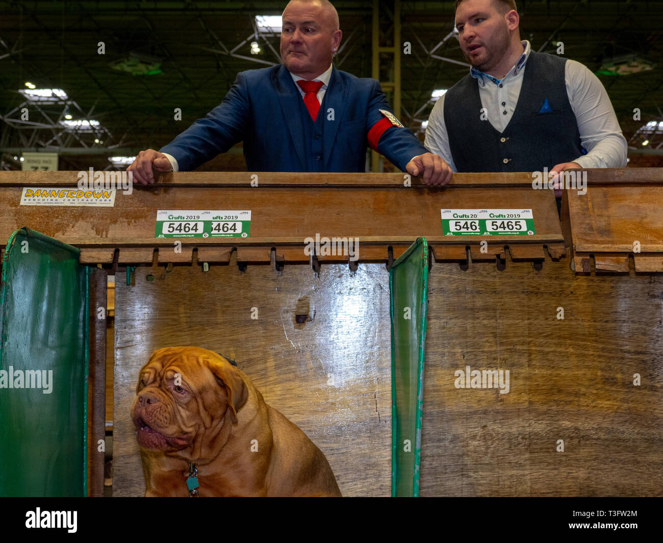 BIRMINGHAM, ENGLAND - MARCH 08: Men look out at National Exhibition Centre on March 8, 2019 in Birmingham, England. (Photo by Peter Dench/Getty Images - Stock Image