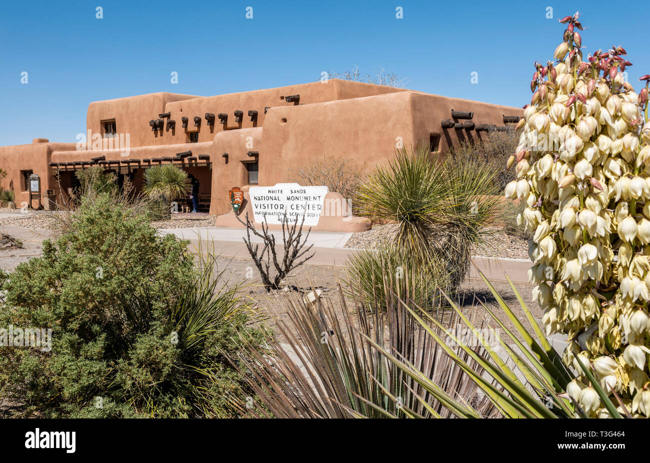 White Sands New Mexico Visitor Center with yucca in bloom - Stock Image