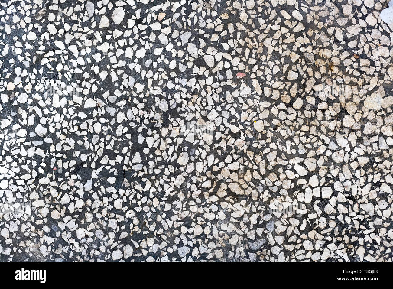 Abstract background. Gray concrete floor with white stone chips. Smooth polished surface. - Stock Image