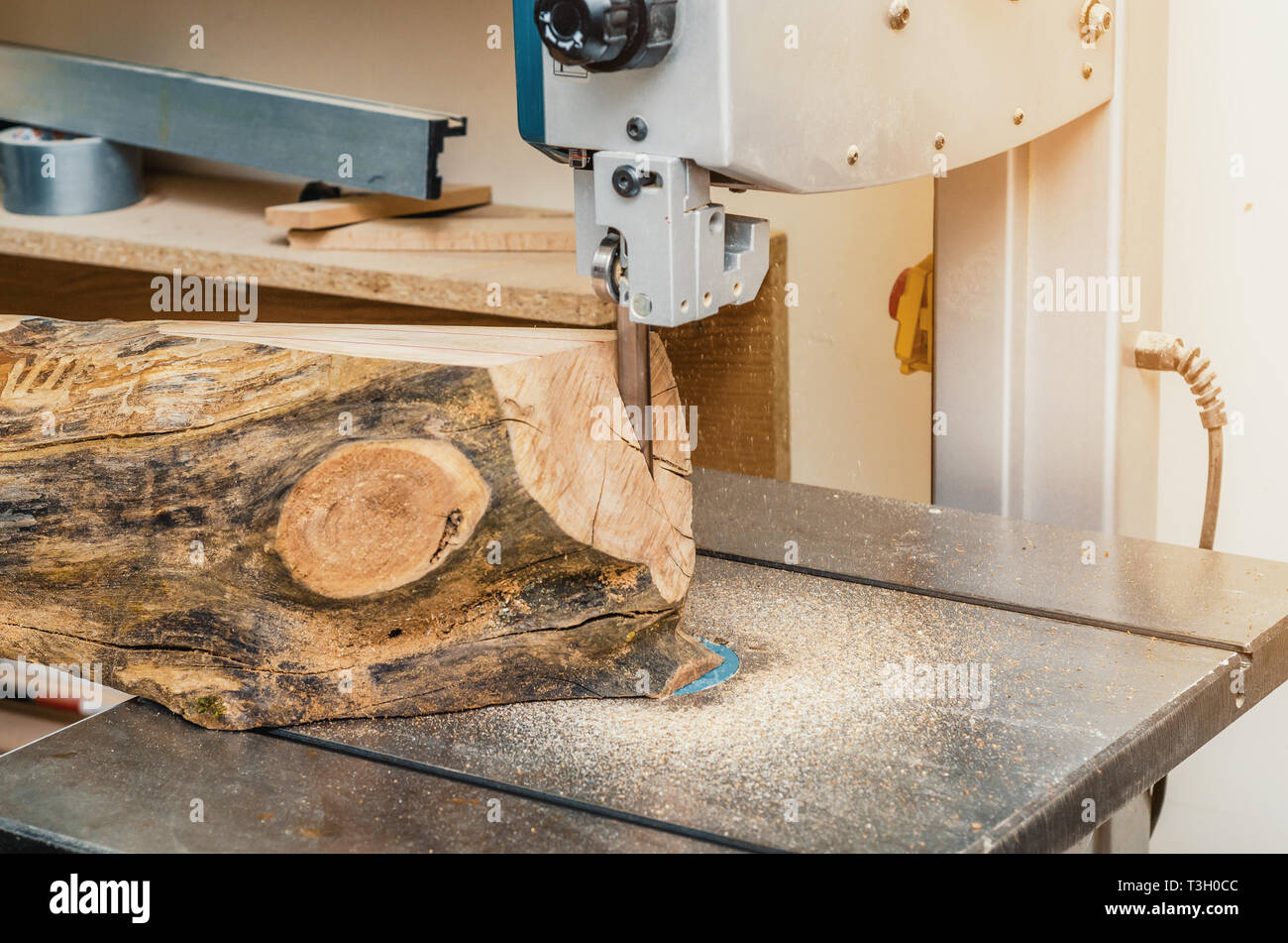 band saw, the machine cuts the log on boards. woodworking
