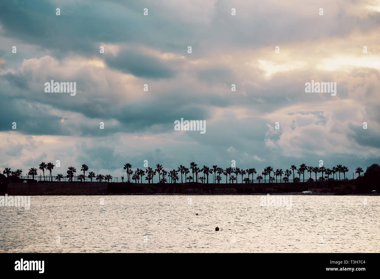 Dark silhouettes of palm trees, sea and amazing cloudy sky at sunset. Distant view. Minimalist landscape wallpaper, background. - Stock Image