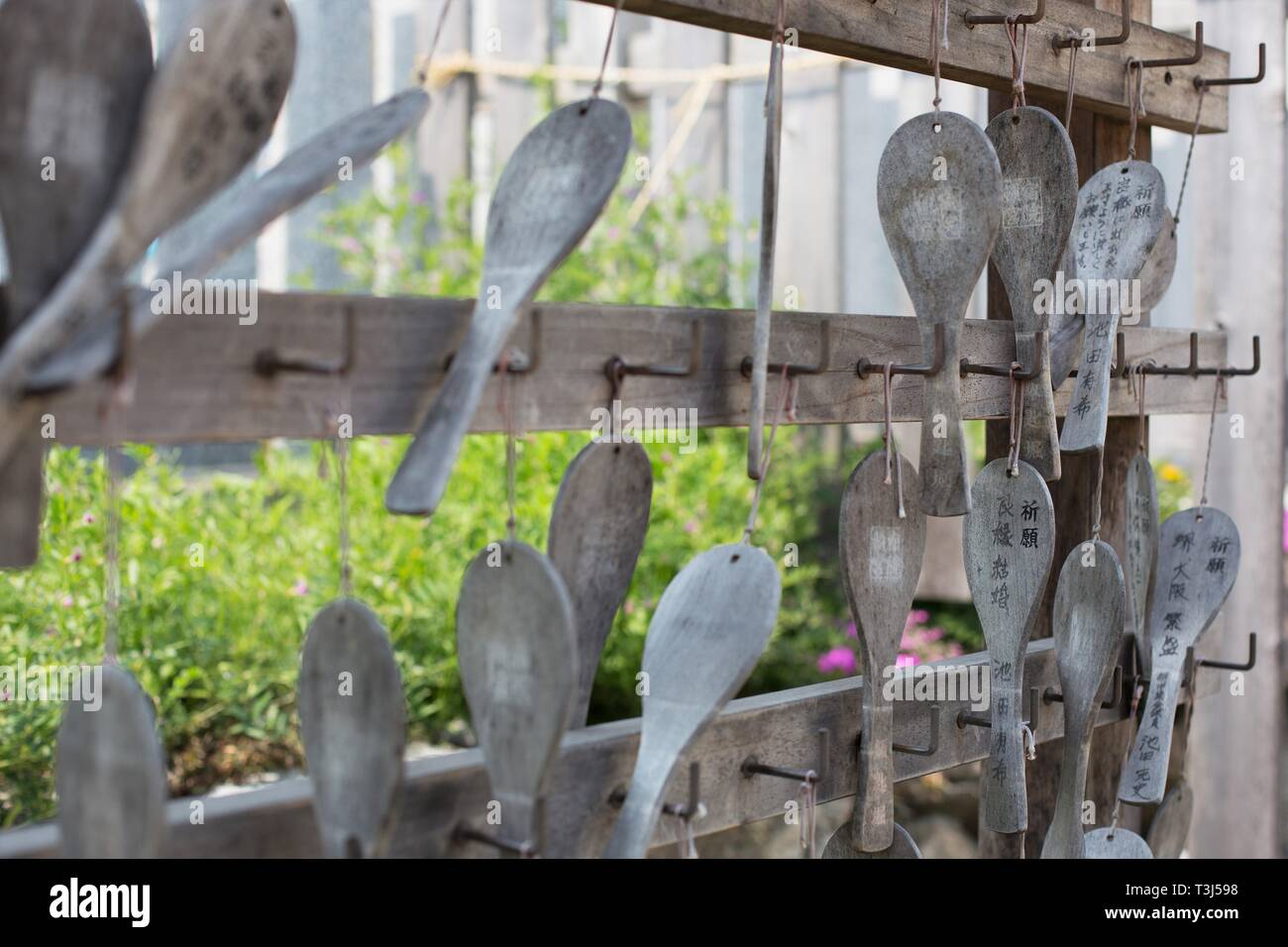 Wooden ema (prayer tablets) hanging in a shrine in a park in Sakai City, Osaka, Japan. Stock Photo