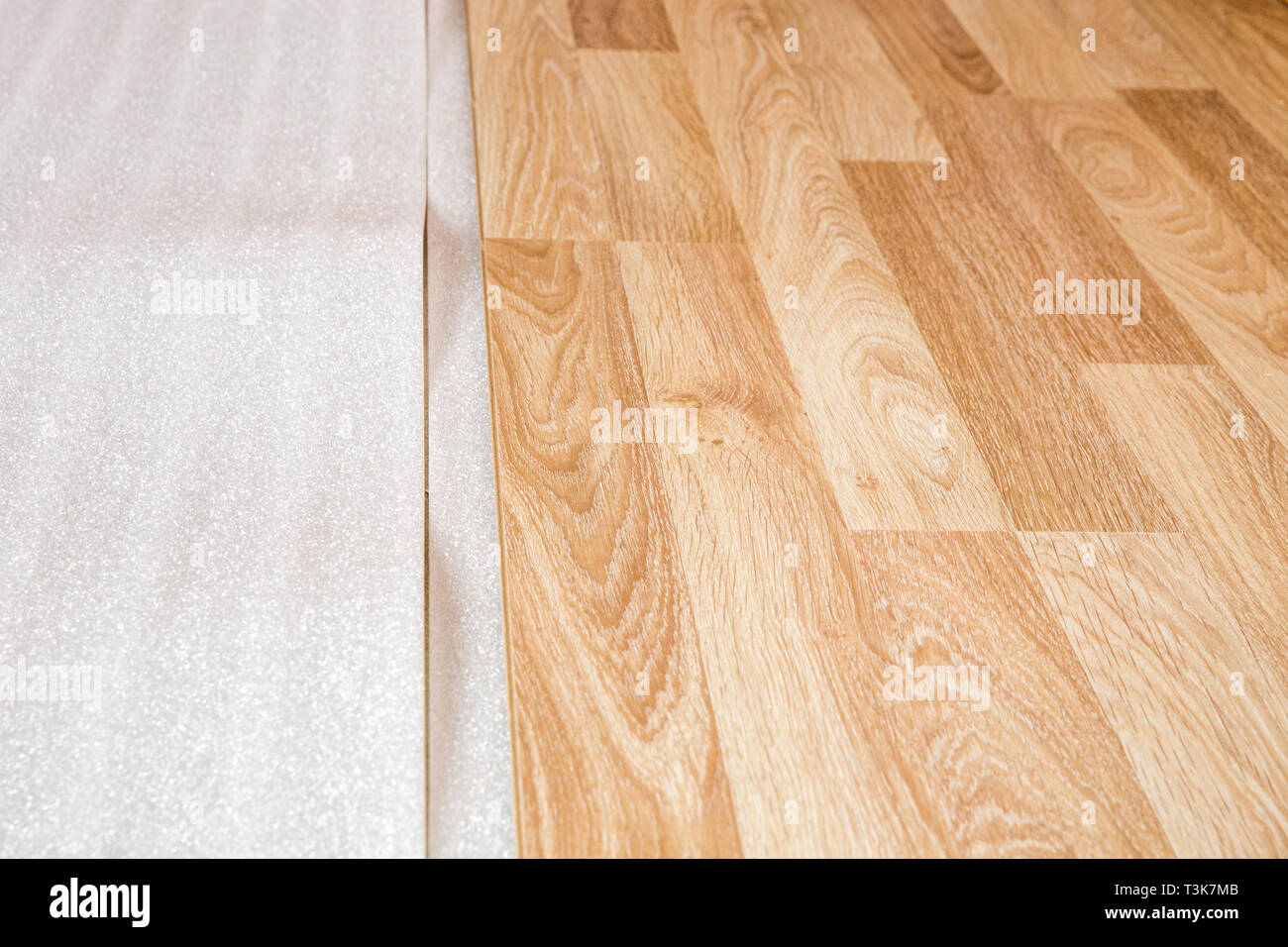 Laminate, the structure of wood, wooden boards and insulating substrate - Stock Image