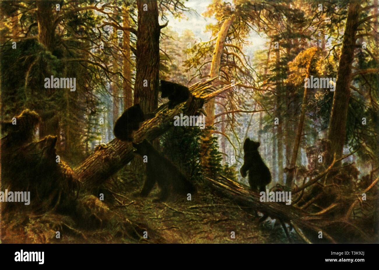 Morning in a Pine Forest Glossy paper Fine Art Print New Shishkin