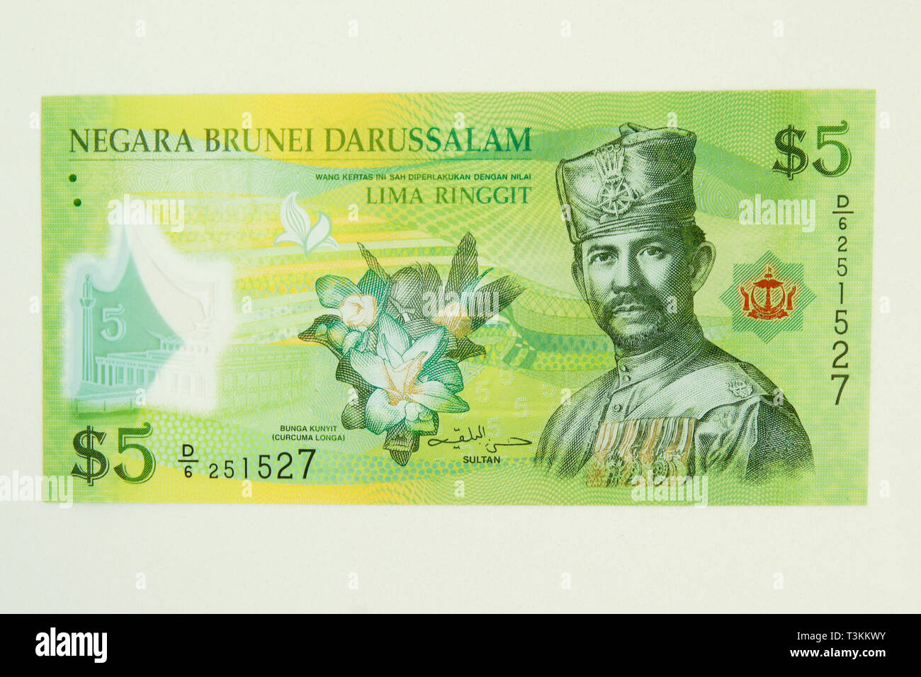 Currency of the Sultanate of Brunei (ringgit) - Stock Image