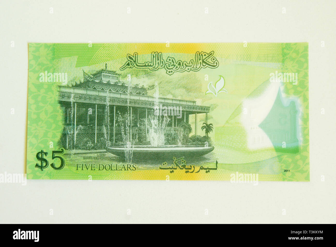 Currency of the Sultanate of Brunei (ringgit, reverse side of note) Stock Photo