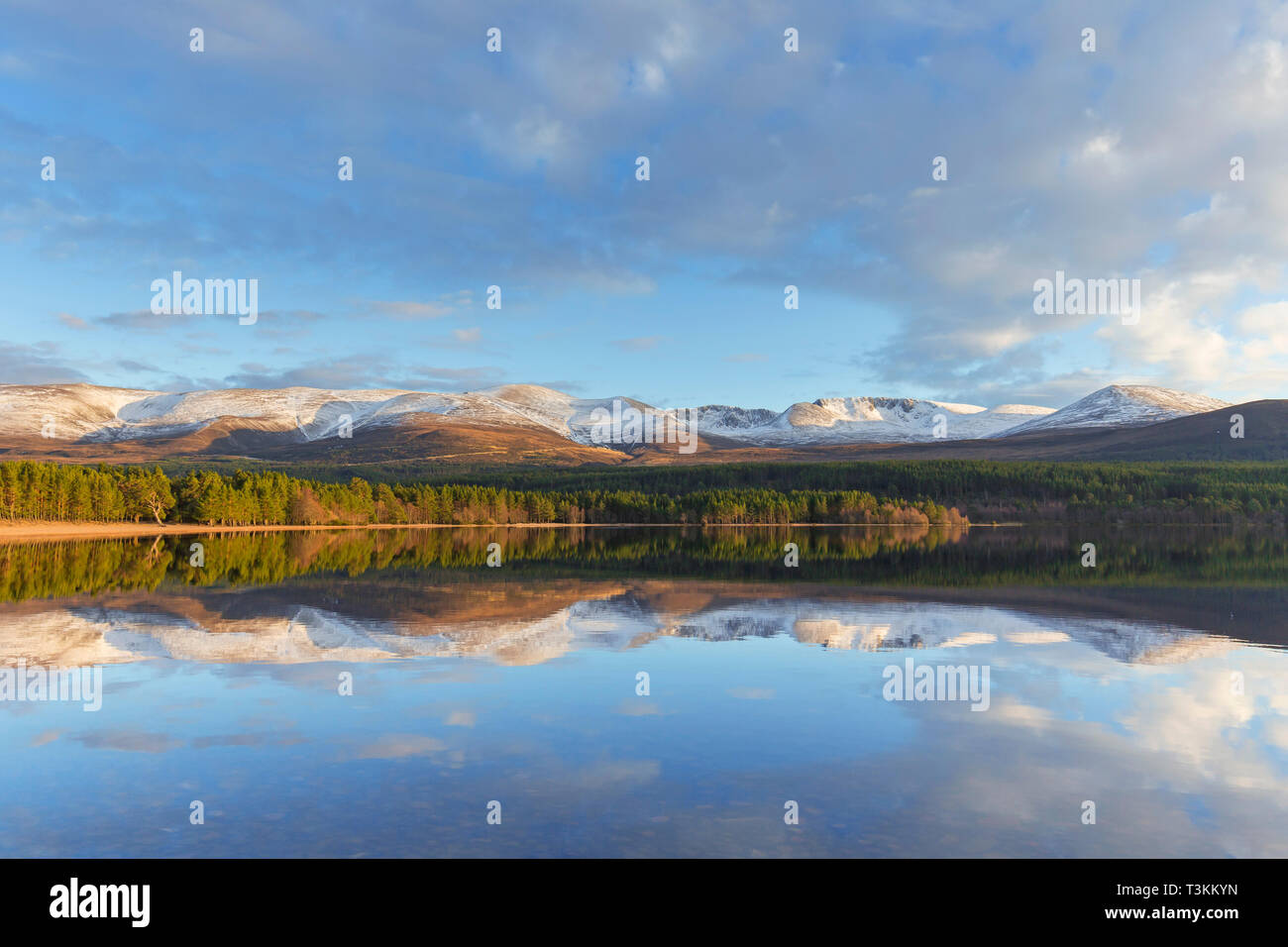 Loch Morlich and Cairngorm Mountains, Cairngorms National Park near Aviemore, Badenoch and Strathspey, Scotland, UK Stock Photo