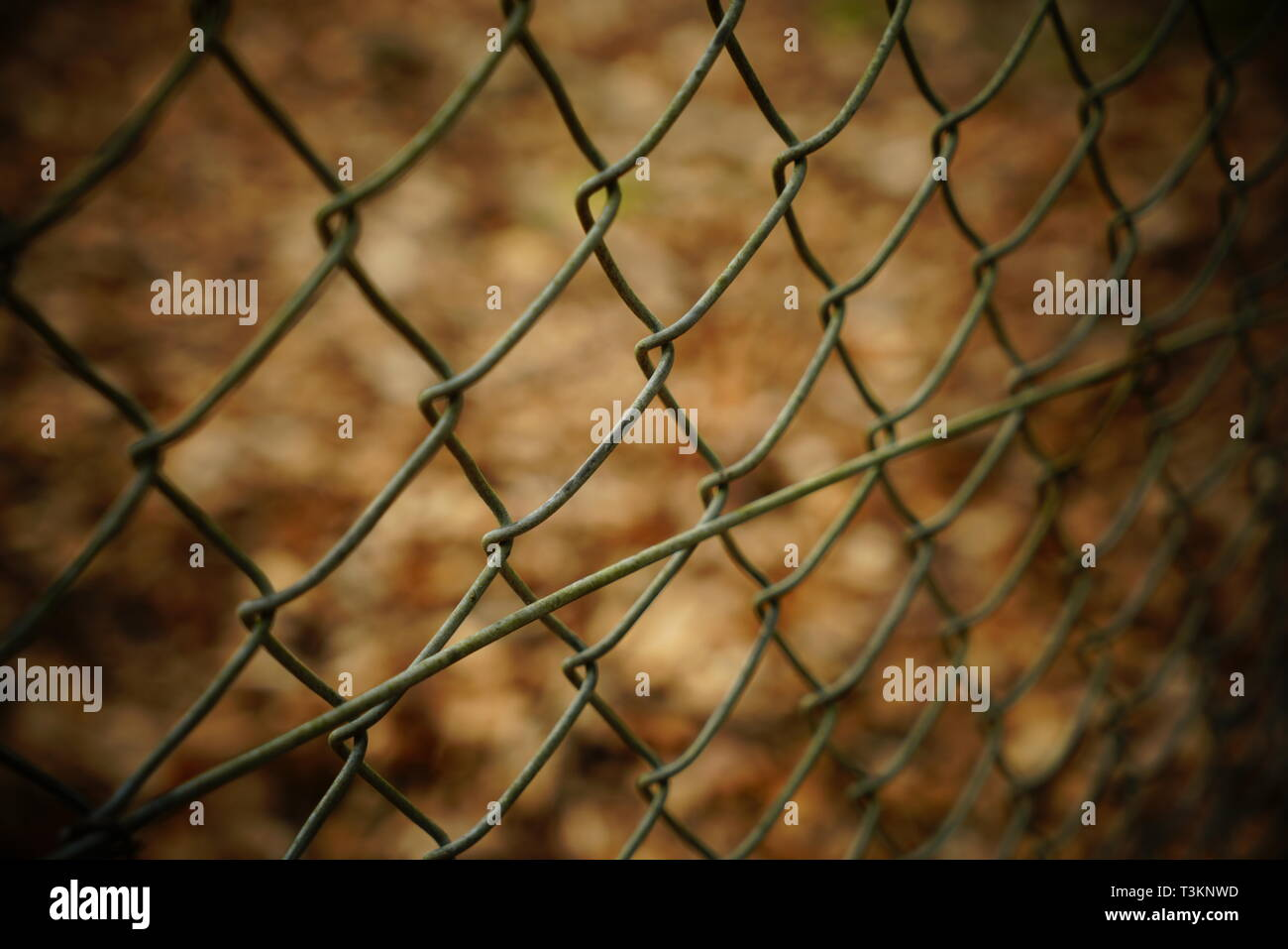 Chain link wire fence with blurred background. - Stock Image