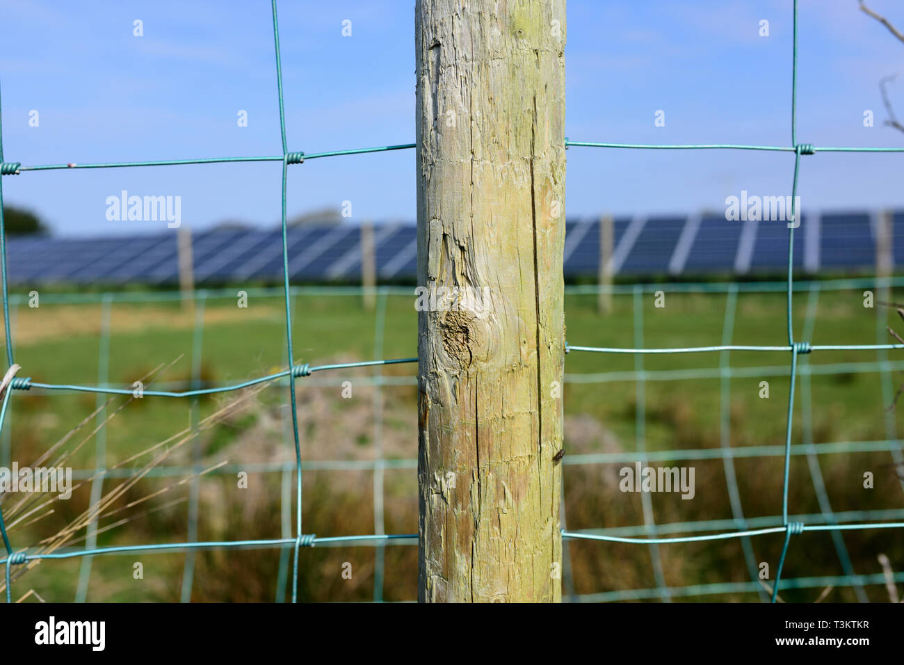 Wooden fence post and wire fence in front of out of focus solar array - Stock Image