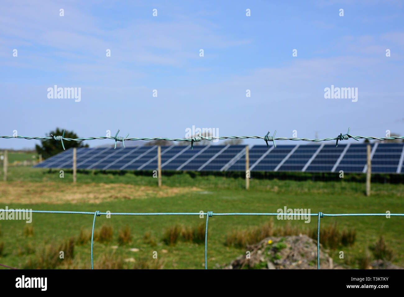 Barbed wire fence in front of out of focus solar array - Stock Image