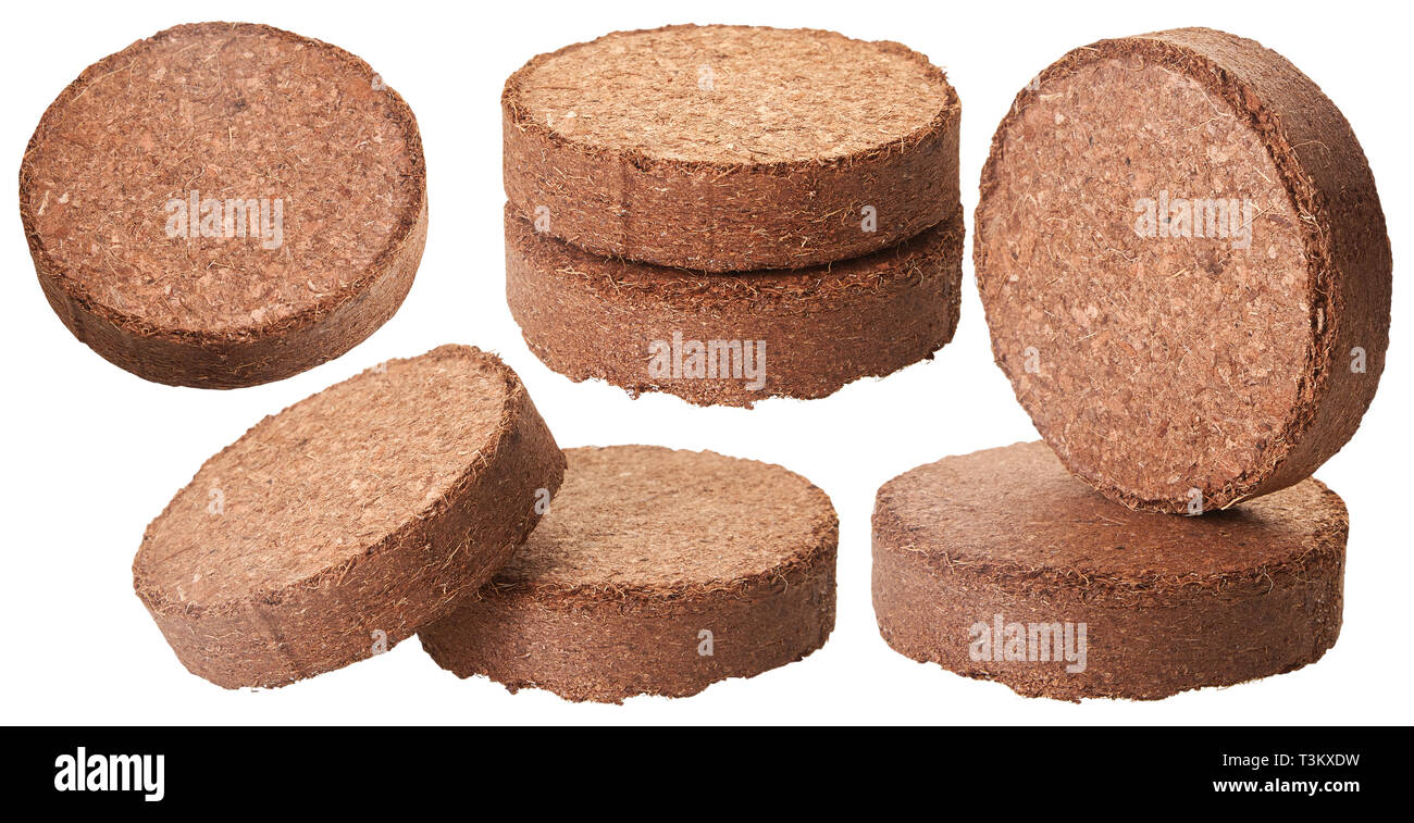 Coconut Coir Isolated on White Background. (Used as Growing Medium or Soil Amendment). - Stock Image