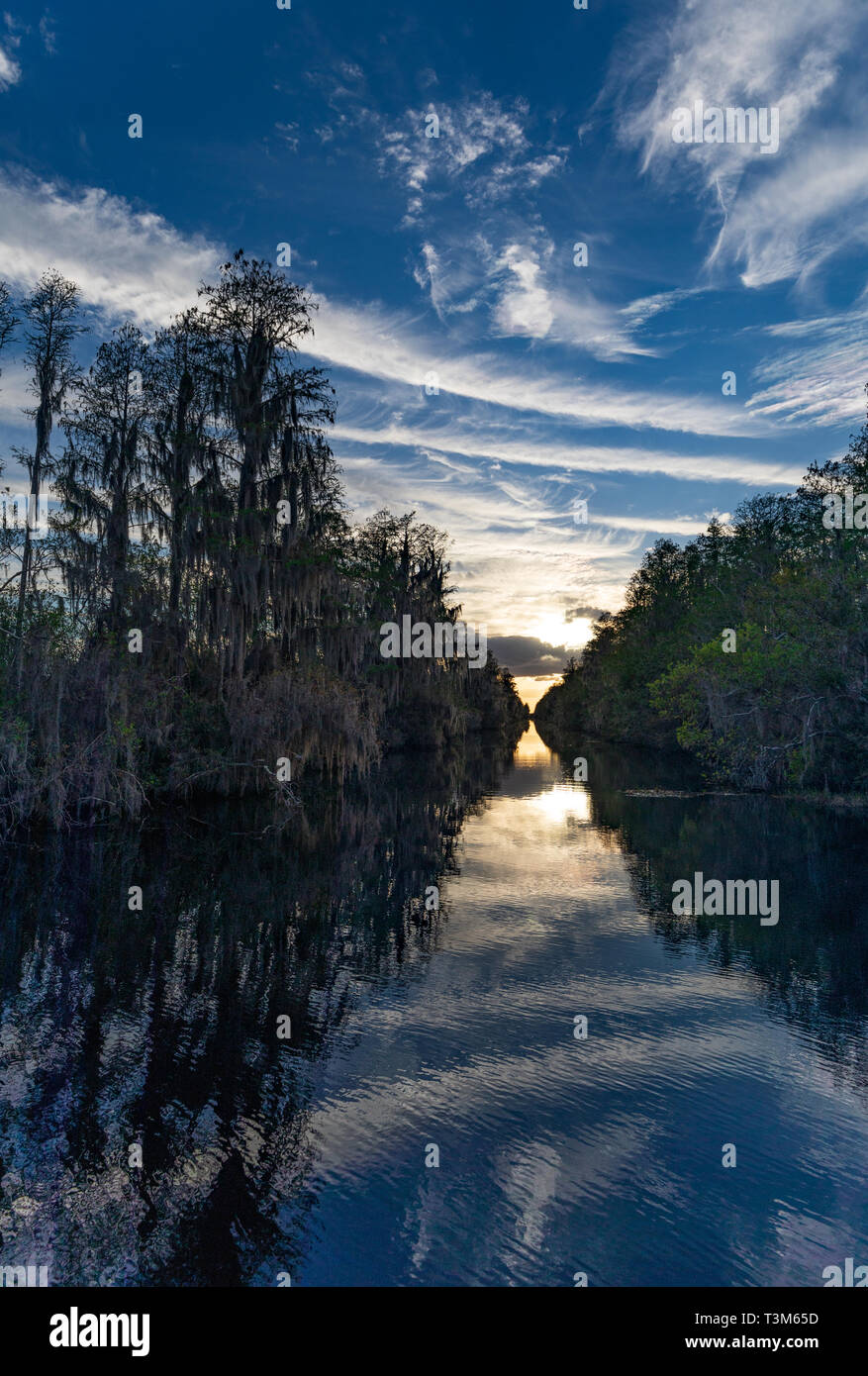 Canal at south entrance to Okefenokee swamp, with sunset in distance. Stock Photo