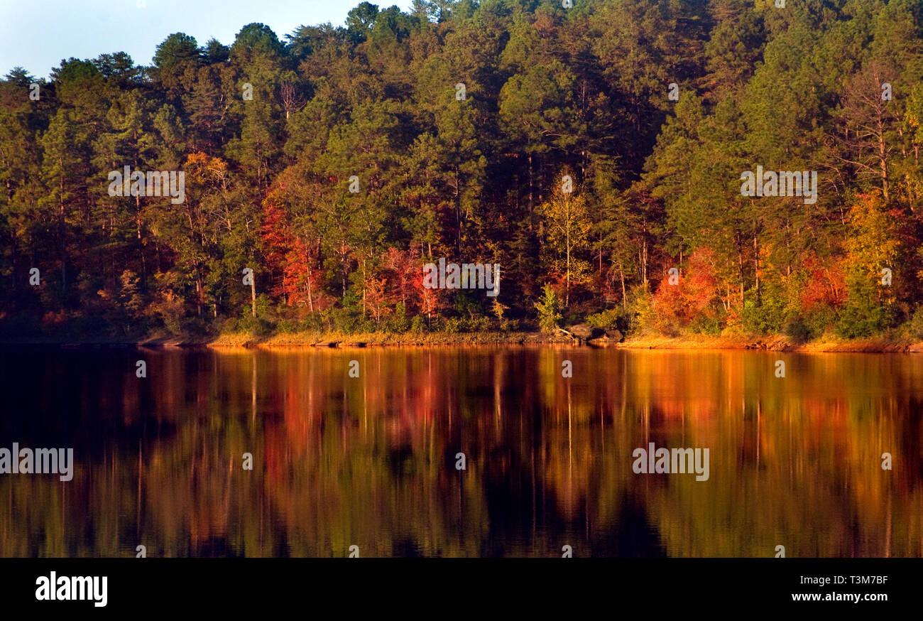 Autumn leaves reflect in the water at Lake Nicol in Tuscaloosa, Alabama, Oct. 29, 2008. - Stock Image