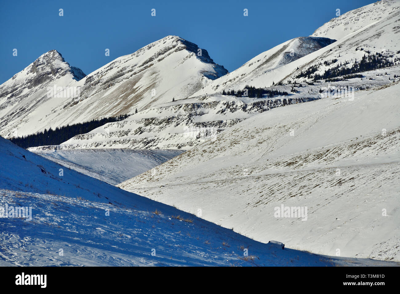 A landscape image of the snow covered rocky mountains with rising peaks and valleys near Cadomin Alberta Canada - Stock Image