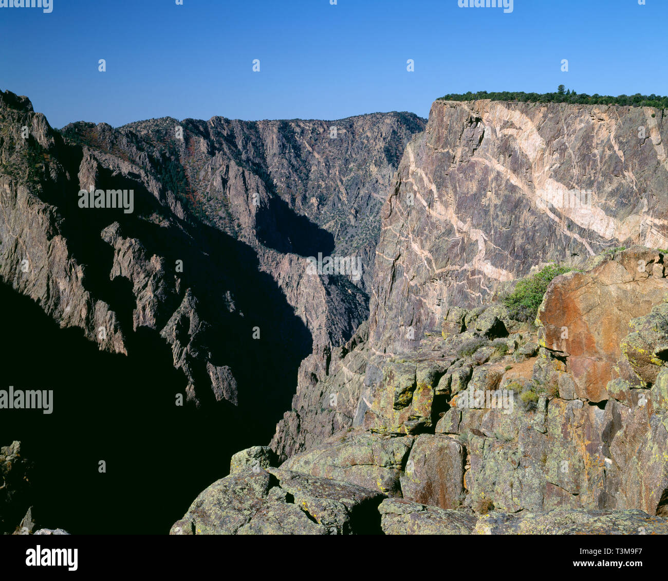 USA, Colorado, Black Canyon of the Gunnison National Park, Intrusions of molten granite form bands in Precambrian cliffs of the Painted Wall. - Stock Image