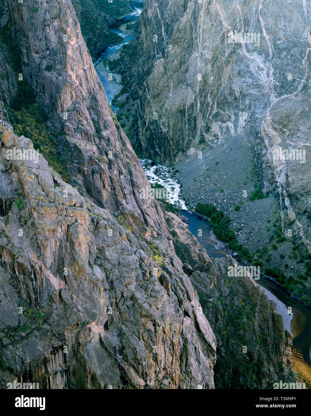 USA, Colorado, Black Canyon of the Gunnison National Park, Gunnison River and bands of of pegmatite granite intrusions at the base of the Painted Wall - Stock Image