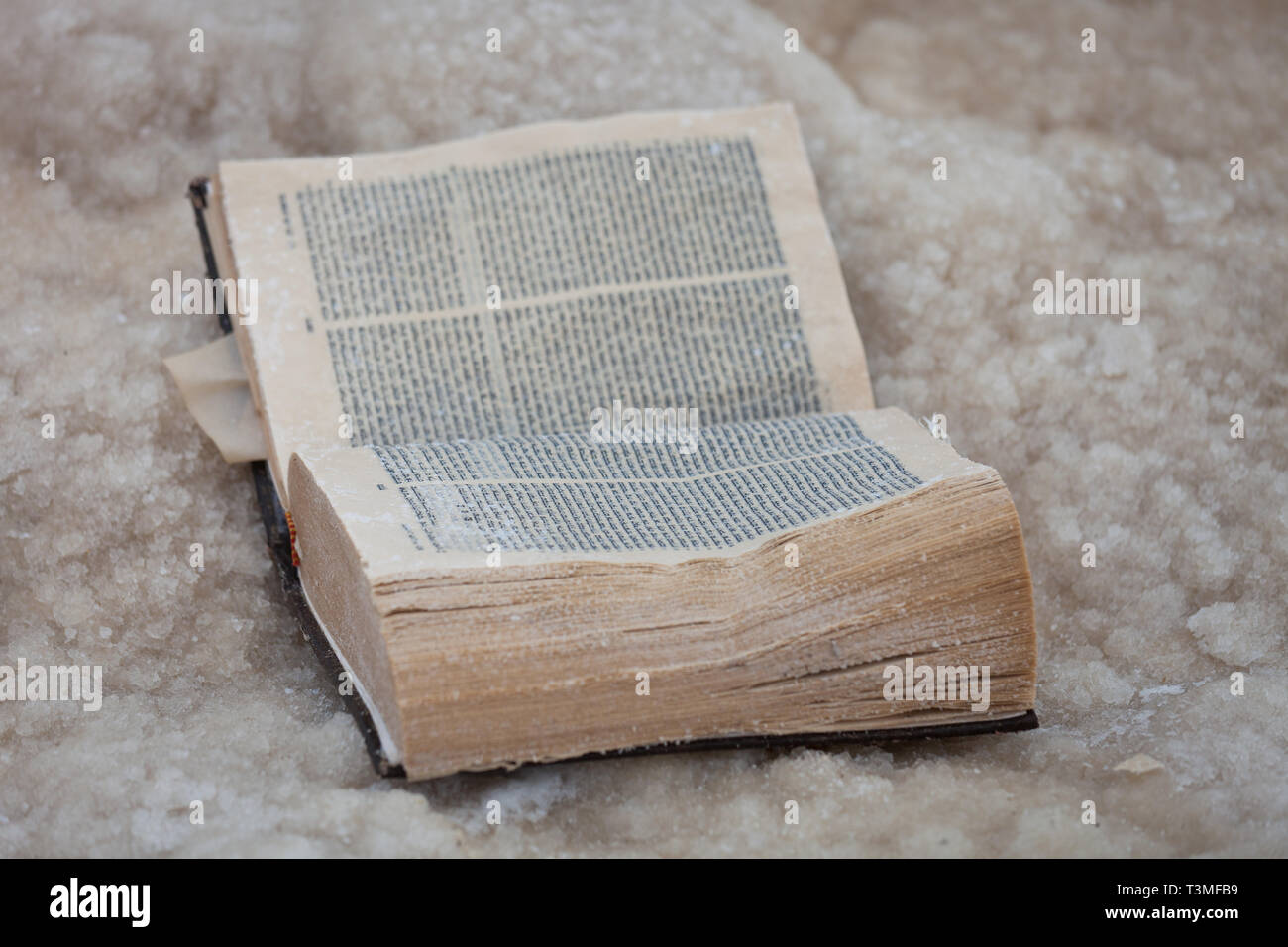 The forgotten old book covered with salt of the Dead sea. Israel. - Stock Image