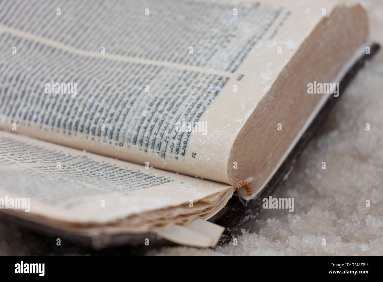 The forgotten old book covered with salt of the Dead sea. Israel. Selective focus. - Stock Image