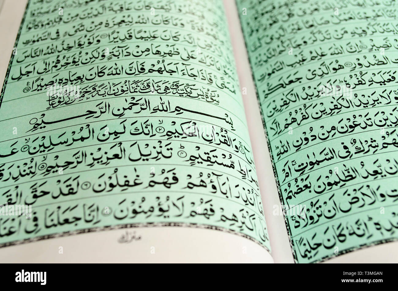 Closeup of open pages of the Holy Quran Stock Photo