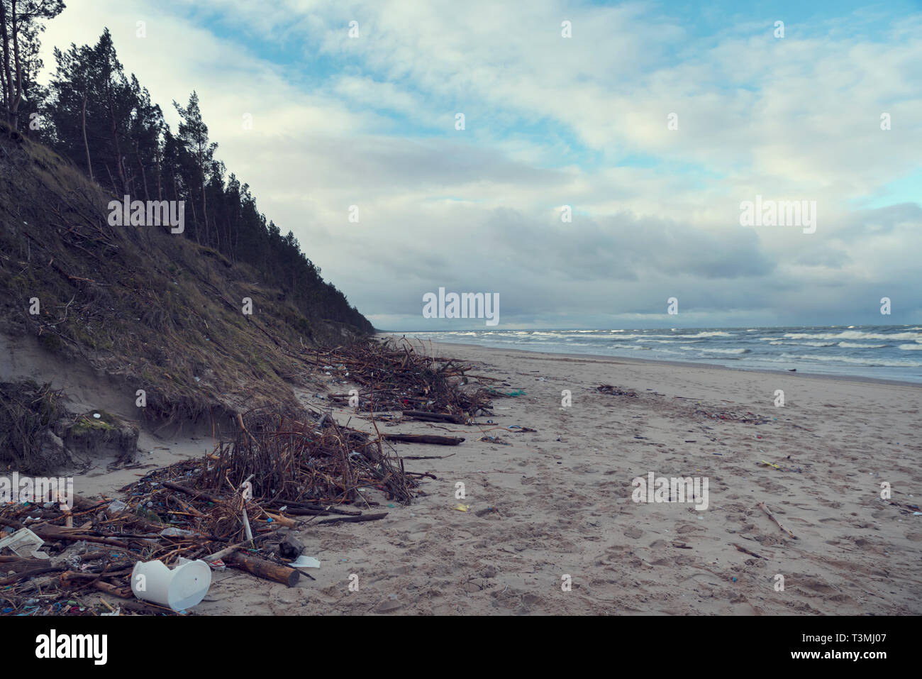 Polluted beach in North Poland in Stegna after sea storm Selective focus - Stock Image
