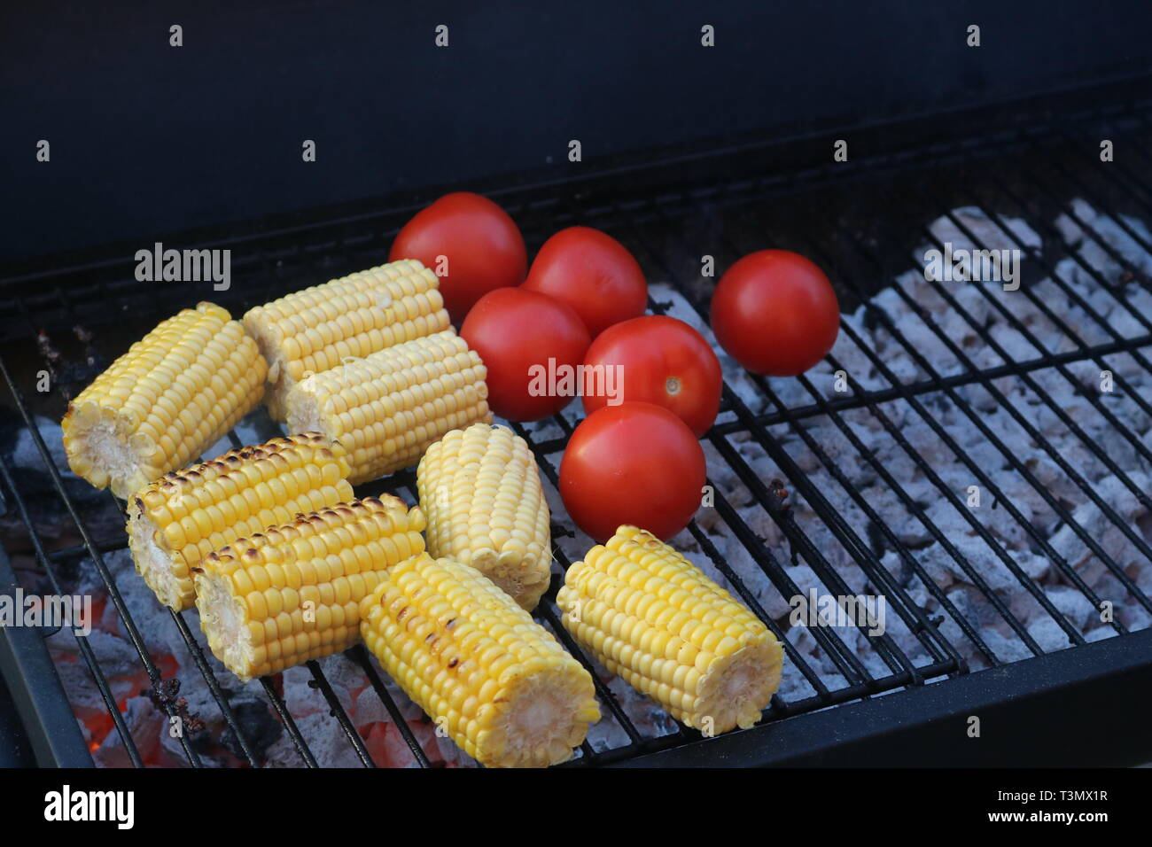 Corn on the cob and tomatoes on a barbecue Stock Photo